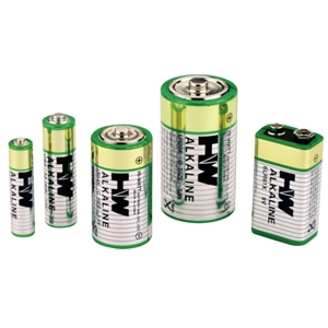 D Batteries (2 Pack)